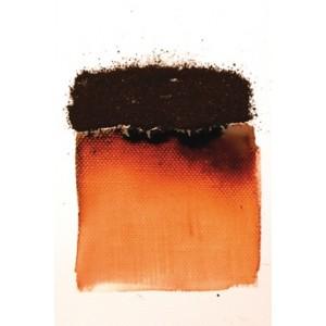 Patyna bister kolor mahoń
