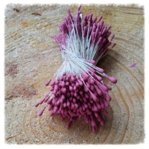 Pręciki i środki do kwiatów